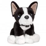 Keel-Toys-35cm-Boston-Terrier-fffg1.jpg