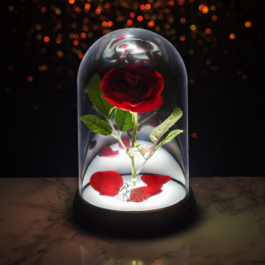 PP4344DPV2 Toy Box Disney Enchanted Rose Light Square Lifestyle 2 - HTUK Gifts