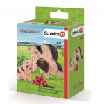 Schleich-42422-Miniature-Pig-Mother-and-Piglets-33.jpg