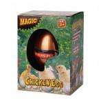 chicken-hatchin-egg-2463-pekm850x850ekm.jpg