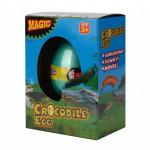 crocodile-hatchin-egg-2451-pekm850x850ekm.jpg